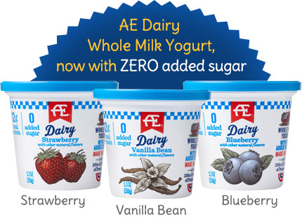 AE Dairy Whole Milk Yogurt with Zero Added Sugar