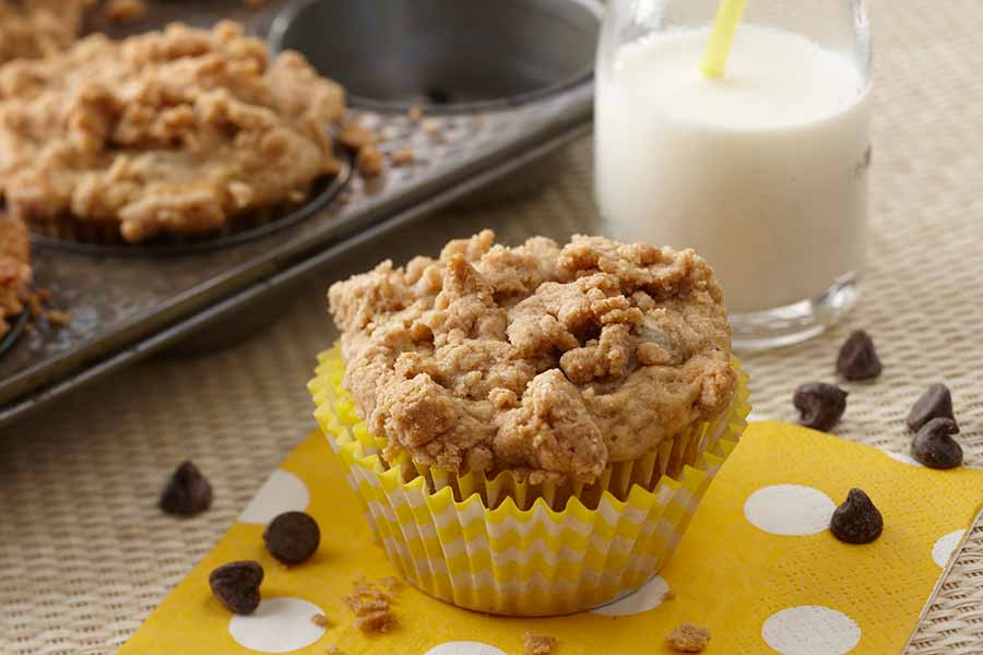 Cottage Cheese Chocolate Chip Muffins